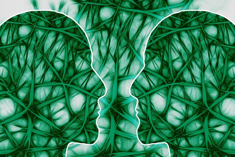 neural-pathways-221719_960_720